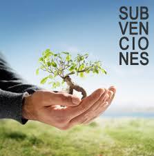 Subvenciones y ferias