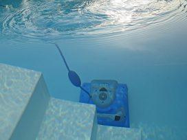 Contrato de arrendamiento de servicios de limpieza de piscina. Reclamación de cantidad por actuación negligente.