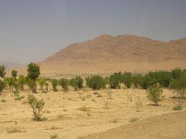 TYPSA gestionará la construcción de seis plantas desalobradoras para abastecer de agua al Sáhara tunecino