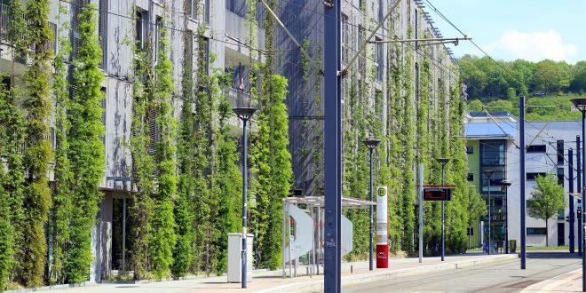 Envolventes vegetales en la edificación: ¿el pulmón de la urbanidad?